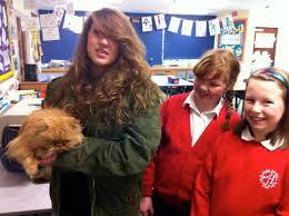 Ashley Hill pupils meet Harry Potter animal trainer Donna ...