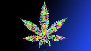 leaf wallpapers hd