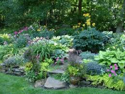 perennial shade garden ideas shade