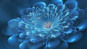 fotm february blue winner by fractal