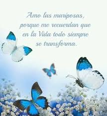 Somos dos - Las mariposas tan bonitas y especiales Elvira  Facebook