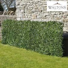 Waltons Garden Screening Trellis Wooden Fence Wall Artificial Laurel 1 X 3m New Ebay