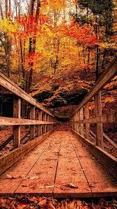 autumn wallpapers full hd q72jpxl