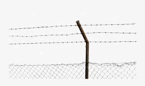 Barbed Wire Fence Png Free Barbed Wire Fence Png Transparent Images 40639 Pngio