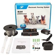 Petjoy Bury In Ground Dog Fence E Fence Underground Electric Fencing Pet Dog Fencing System Remote Shock E Fencing With Collar For Dogs 1 Set For 1 Dog Prices Shop Deals Online Pricecheck