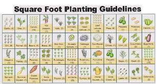 square foot planting guide with layout