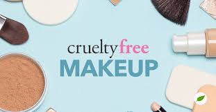 free makeup all your questions