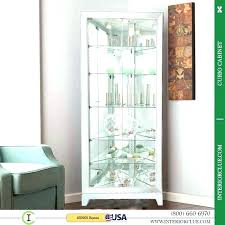 decoration modern curio cabinet for