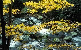 hd wallpaper autumn landscape mounn