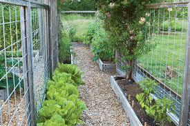 pest proof vegetable garden finegardening