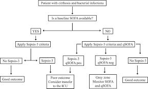 sepsis 3 criteria and quick sofa