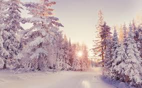 تحميل خلفيات المناظر الطبيعية في فصل الشتاء الثلوج الغابات غروب