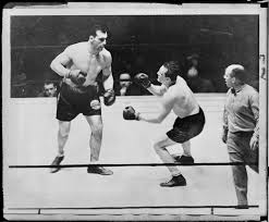 Schaaf's fatal blow by Primo Carnera the Italian giant in N.Y. Garden -  Digital Commonwealth