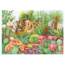 the flower show desert plants 1000