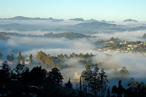 Image result for Tranquil Hills of Kodaikanal""