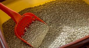 how to clean up cat litter from carpet