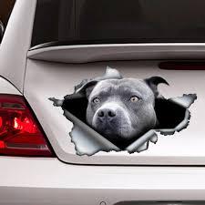 Blue Pitbull Car Decal Car Decoration Car Sticker Blue Etsy