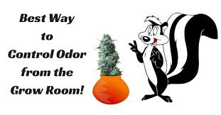 odor from the grow room