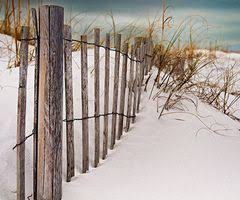 Beach With Dunes And Dune Fences Love Love Love The Beach Sand And Water Beach Living Dream Beach