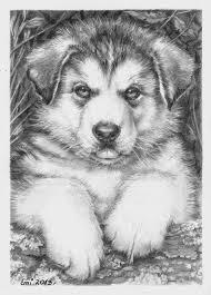 Husky Puppy By Ninsianna Dieren Tekenen Kleurplaten Honden