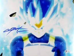 Christopher Sabat Autographed 11x14 Dragon Ball Z Vegeta Photo ...