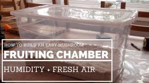 how to build a shotgun fruiting chamber