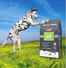 giving your pet great dog food is even
