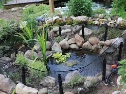 Outdoor Turtle Pond Pond Design Garden Pond Design Turtle Pond