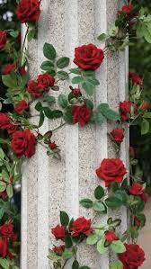 خصم كبير اختيار ضخم من تصميم فريد اجمل الورود الحمراء