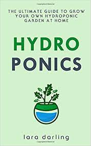 grow your own hydroponic garden