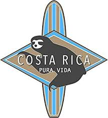 Amazon Com Costa Rica Surfing Sloth Logo Sticker Decal Window Bumper Sticker Vinyl 5 Automotive