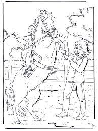 Steigerend Paard Kleurplaten Paarden