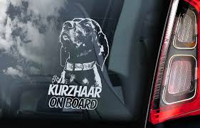 Kurzhaar Car Window Sticker German Shorthaired Pointer Deutsch Dog Decal V03 Ebay