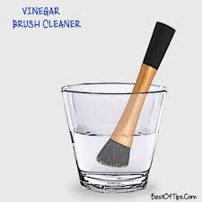 clean makeup brushes with vinegar