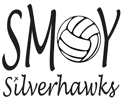 Smoy Volleyball Car Decal Single Color Spirit 2 Share Llc