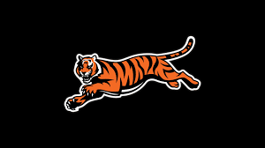 cincinnati bengals backgrounds hd