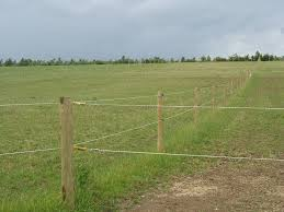 Equine Fencing Gloucestershire Marcus Smith