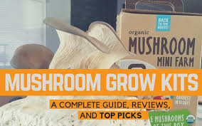 mushroom growing kits plete guide