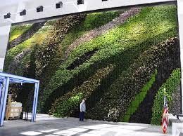23 story atrium living wall