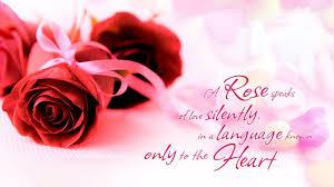 red roses speaks up love love