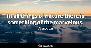 aristotle in all things of nature there is something of