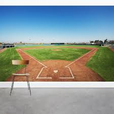 Baseball In Field Wall Mural