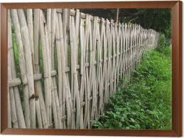 Old Bamboo Fence In Rural Area Wall Mural Pixers We Live To Change