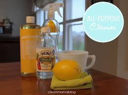diy homemade cleaners all purpose