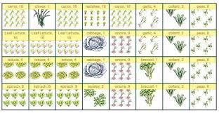 square foot gardening planting chart