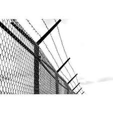 10 Gauge Barbed Wire Fencing At Rs 58 Kilogram Barbed Wire Fencing Kata Tar कट ल त र Bagalkot Wire Work Bagalkot Id 19065313255