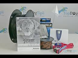 Extreme Dog Fence Pro Grade Electric Dog Fence Review Youtube