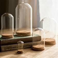 glass display cloche bell jar dome