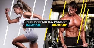 npl best workout supplements to reach