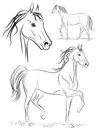 Paard Illustratie Vectoren Illustraties En Clipart 123rf